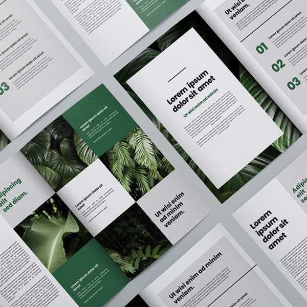 Brochure Printing Brennan Print Management